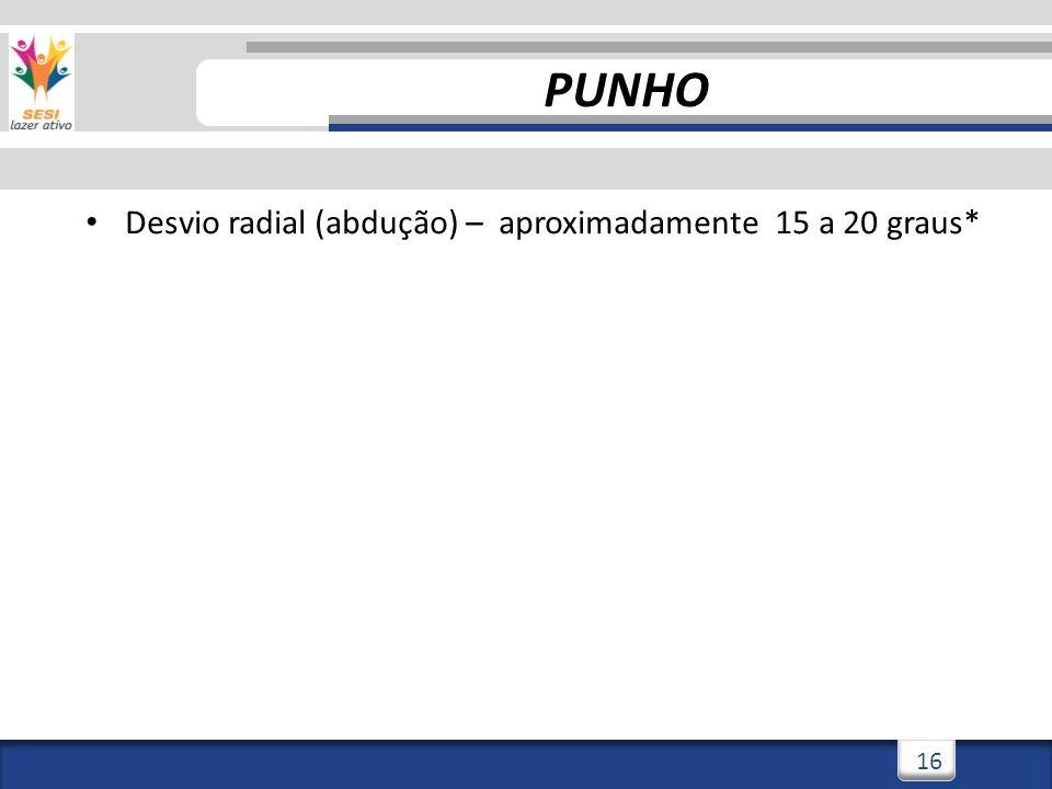2/3/201416 PUNHO Desvio radial (abdução) – aproximadamente 15 a 20 graus*