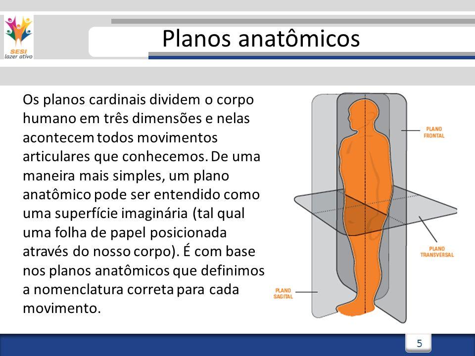 2/3/20145 5 Planos anatômicos Os planos cardinais dividem o corpo humano em três dimensões e nelas acontecem todos movimentos articulares que conhecemos.