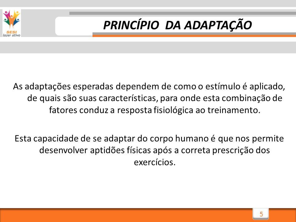 16 VARIABILIDADE Para maiores esclarecimentos procure ler: Tratado geral de treinamento desportivo – Platonov, 2008 Variáveis estruturais do treinamento – Chagas e Lima, 2007