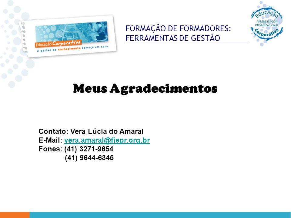 FORMAÇÃO DE FORMADORES: FERRAMENTAS DE GESTÃO Meus Agradecimentos Contato: Vera Lúcia do Amaral E-Mail: vera.amaral@fiepr.org.brvera.amaral@fiepr.org.