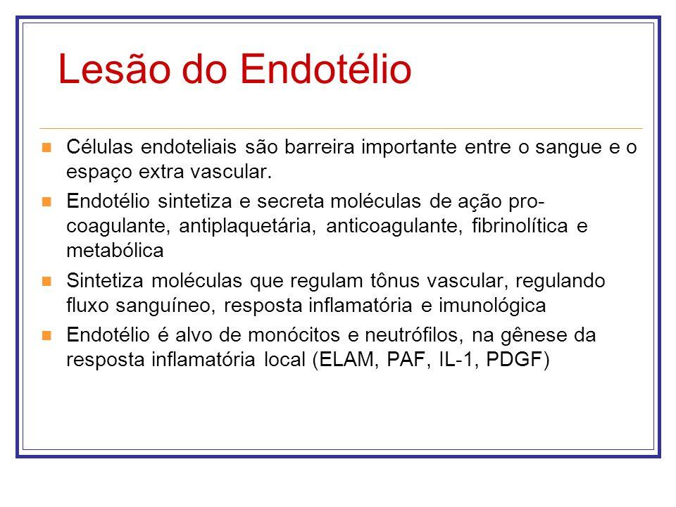 Lesão do Endotélio Células endoteliais são barreira importante entre o sangue e o espaço extra vascular. Endotélio sintetiza e secreta moléculas de aç