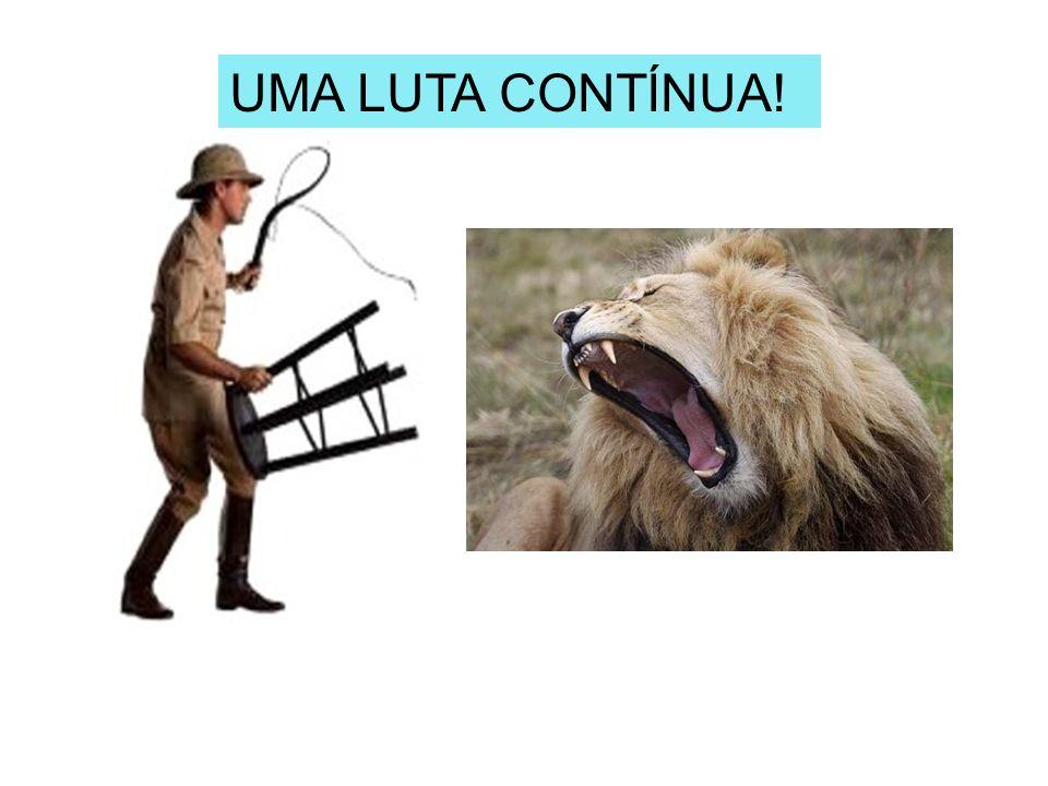 APLICAÇÃO DO PROTOCOLO DE CIRURIA SEGURA.