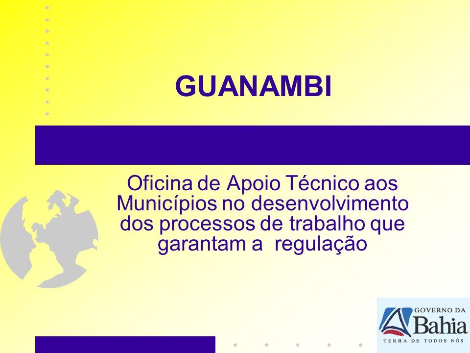 GUANAMBI Oficina de Apoio Técnico aos Municípios no desenvolvimento dos processos de trabalho que garantam a regulação