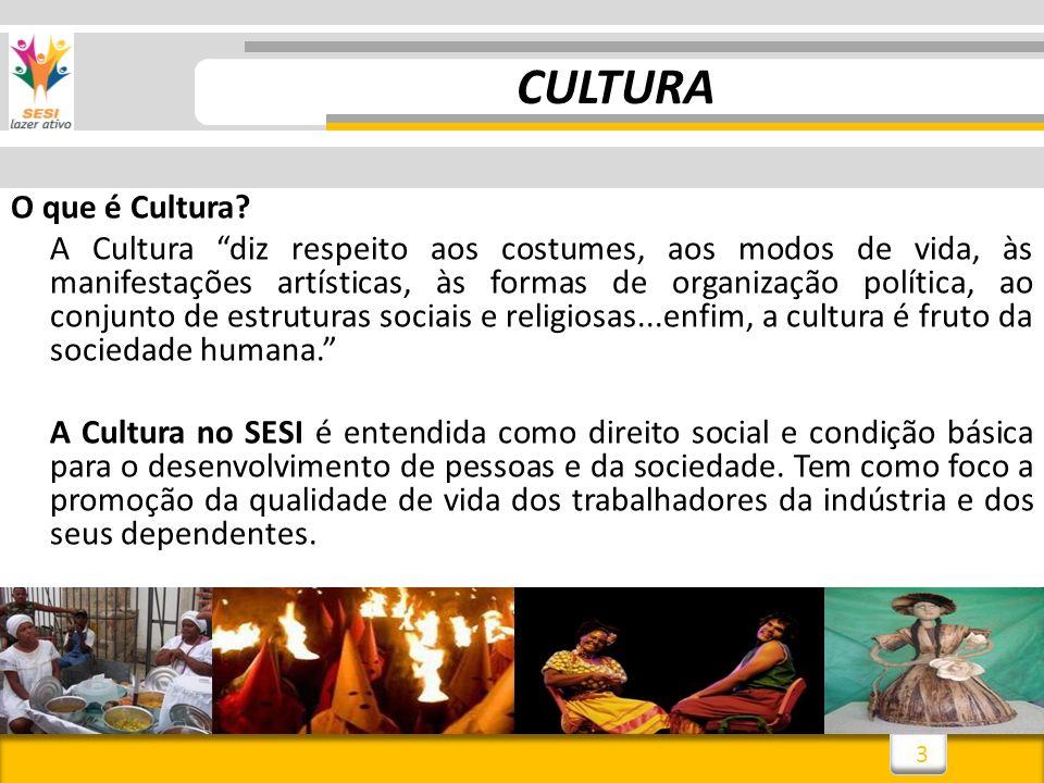 3 CULTURA O que é Cultura? A Cultura diz respeito aos costumes, aos modos de vida, às manifestações artísticas, às formas de organização política, ao
