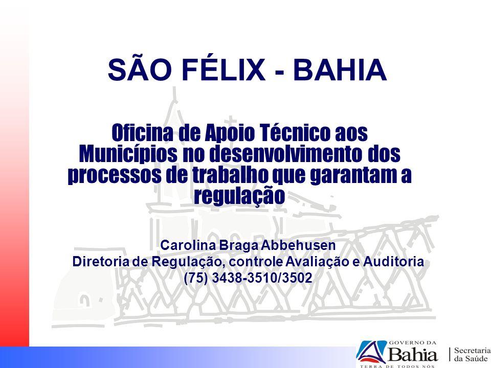 SÃO FÉLIX - BAHIA Oficina de Apoio Técnico aos Municípios no desenvolvimento dos processos de trabalho que garantam a regulação Carolina Braga Abbehus