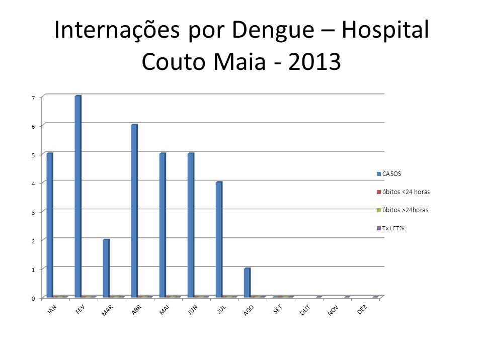 Internações por Dengue – Hospital Couto Maia - 2013