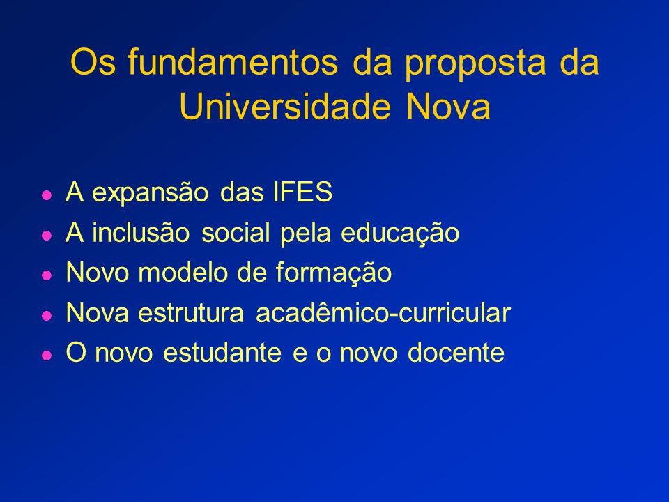 O modelo e algumas questões Diretrizes curriculares O perfil do aluno e suas expectativas A profissionalização do Bacharel Interdisciplinar A estrutura atual dos cursos e das Universidades