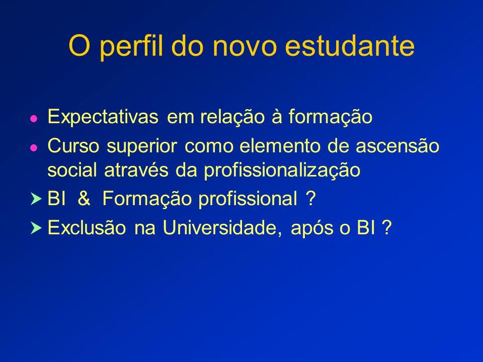 A profissionalização do BI A formação atenderá as profissões emergentes .