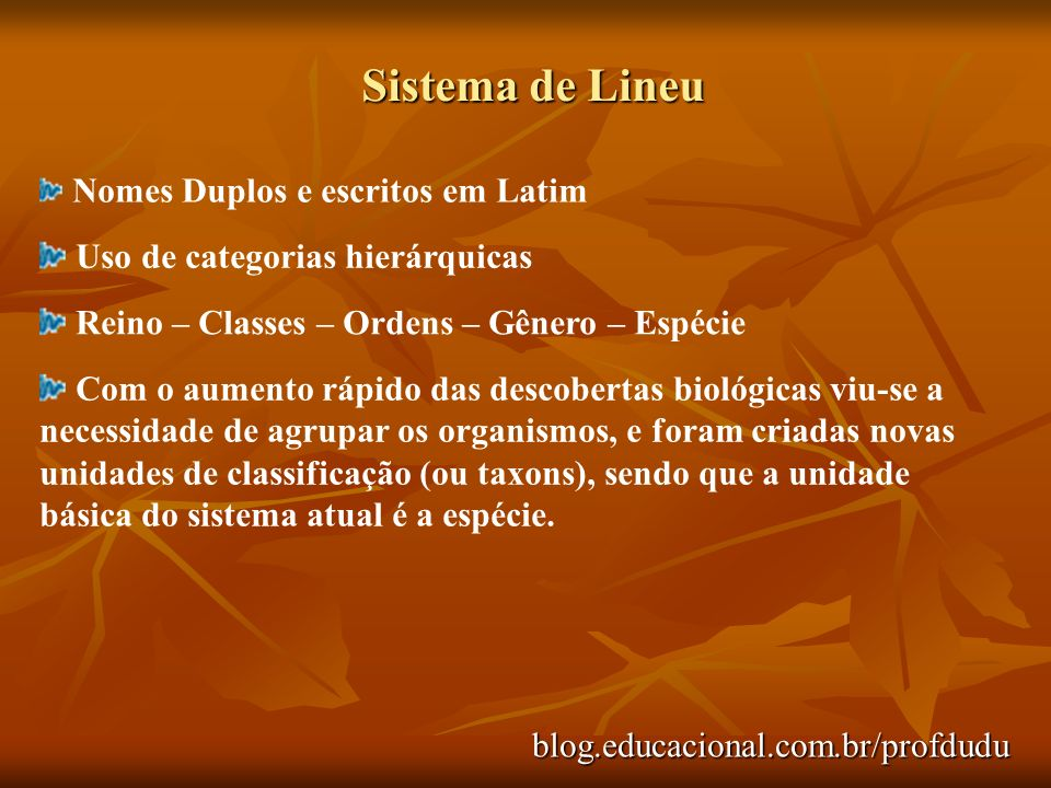 Sistema de Lineu blog.educacional.com.br/profdudu Nomes Duplos e escritos em Latim Uso de categorias hierárquicas Reino – Classes – Ordens – Gênero –