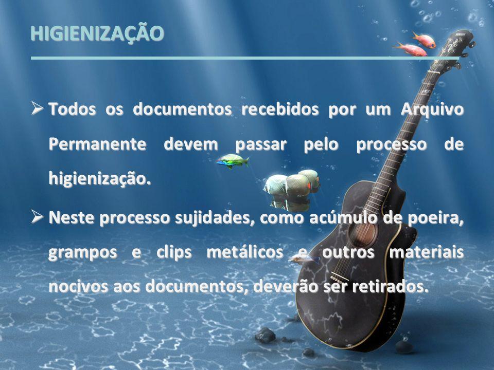 HIGIENIZAÇÃO Todos os documentos recebidos por um Arquivo Permanente devem passar pelo processo de higienização. Todos os documentos recebidos por um