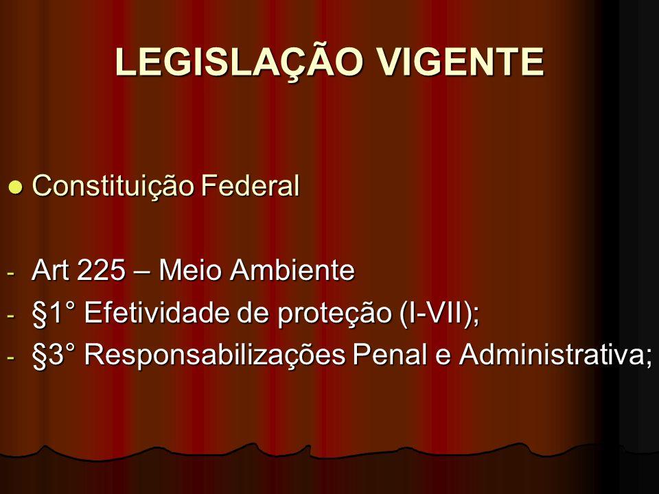 LEGISLAÇÃO VIGENTE Constituição Federal Constituição Federal - Art 225 – Meio Ambiente - §1° Efetividade de proteção (I-VII); - §3° Responsabilizações
