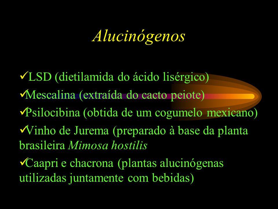 Alucinógenos LSD (dietilamida do ácido lisérgico) Mescalina (extraída do cacto peiote) Psilocibina (obtida de um cogumelo mexicano) Vinho de Jurema (preparado à base da planta brasileira Mimosa hostilis Caapri e chacrona (plantas alucinógenas utilizadas juntamente com bebidas)