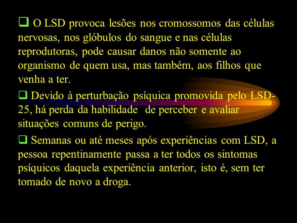 O LSD provoca lesões nos cromossomos das células nervosas, nos glóbulos do sangue e nas células reprodutoras, pode causar danos não somente ao organismo de quem usa, mas também, aos filhos que venha a ter.
