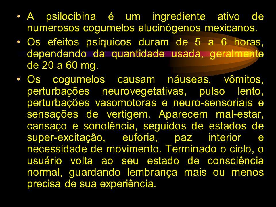 A psilocibina é um ingrediente ativo de numerosos cogumelos alucinógenos mexicanos.