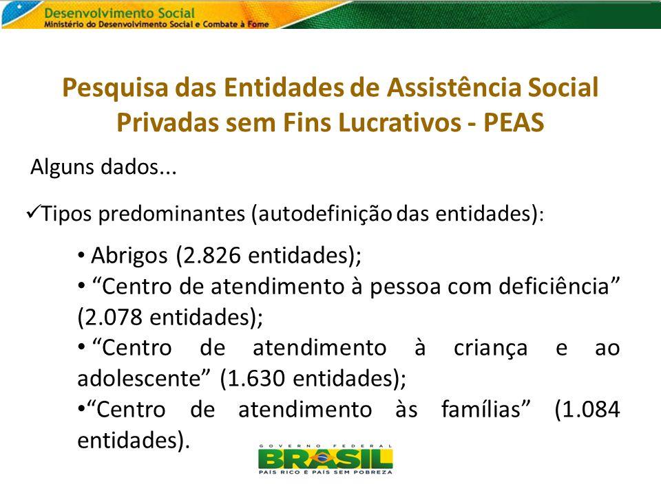 Alguns dados... Tipos predominantes (autodefinição das entidades) : Abrigos (2.826 entidades); Centro de atendimento à pessoa com deficiência (2.078 e