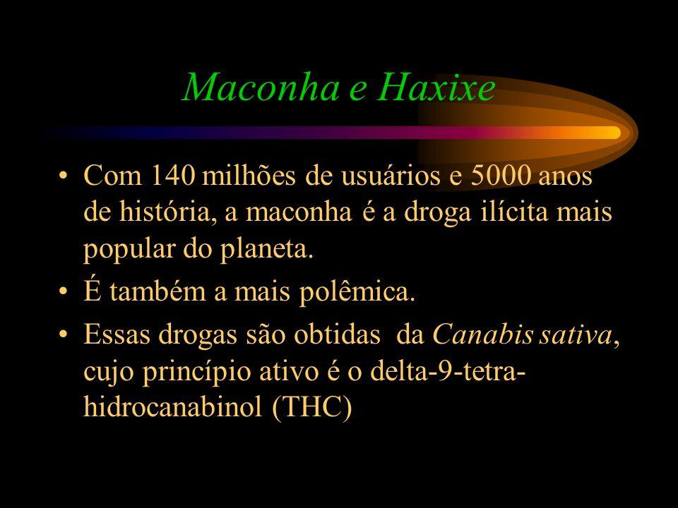 Maconha e Haxixe Com 140 milhões de usuários e 5000 anos de história, a maconha é a droga ilícita mais popular do planeta.
