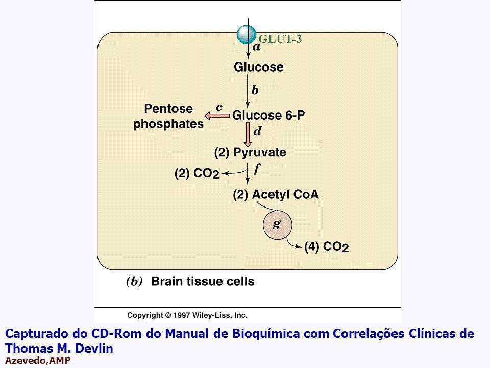 AMPA 2003 Azevedo,AMP GLUT-3 Capturado do CD-Rom do Manual de Bioquímica com Correlações Clínicas de Thomas M. Devlin