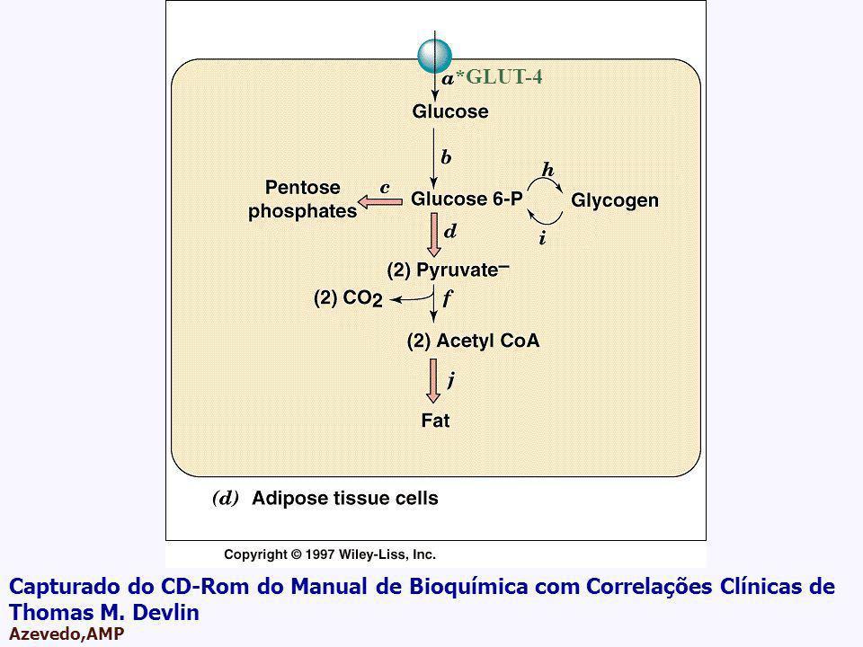 AMPA 2003 Azevedo,AMP *GLUT-4 Capturado do CD-Rom do Manual de Bioquímica com Correlações Clínicas de Thomas M. Devlin