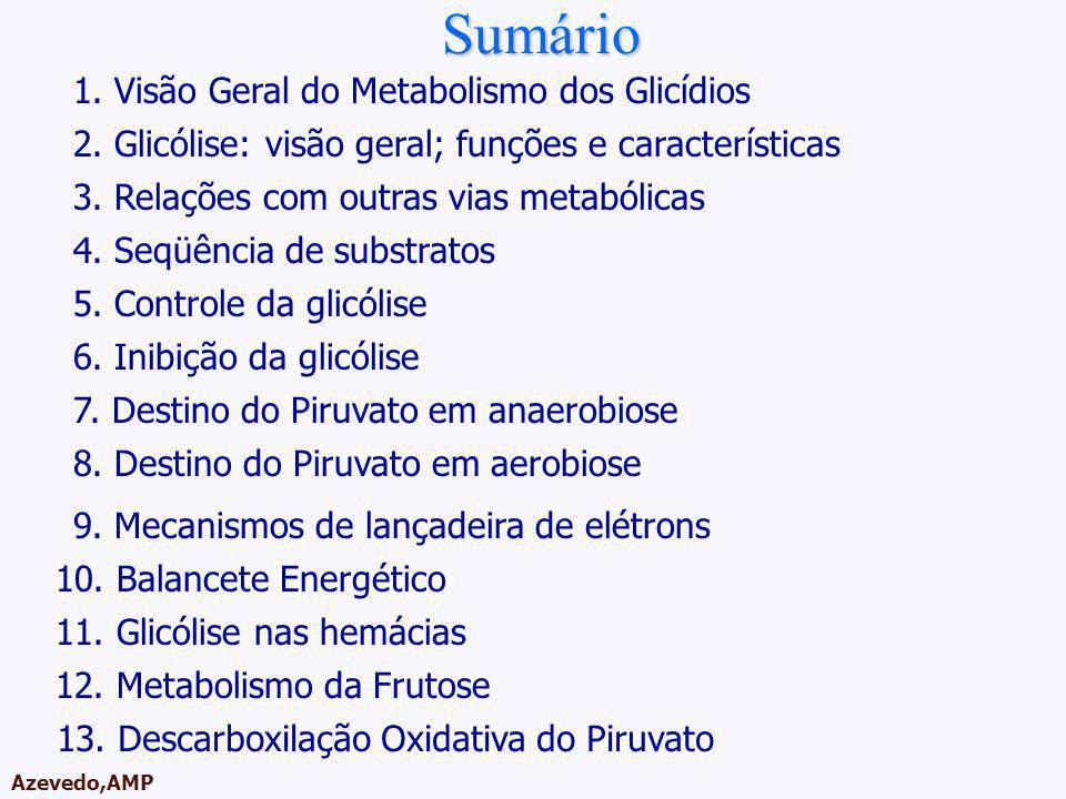 AMPA 2003 Azevedo,AMP Roteiro da Aula 1. Visão Geral do Metabolismo dos Glicídios 2. Glicólise: visão geral; funções e características Sumário 4. Seqü
