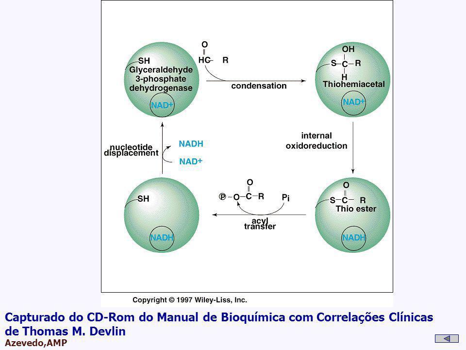 AMPA 2003 Azevedo,AMP Capturado do CD-Rom do Manual de Bioquímica com Correlações Clínicas de Thomas M. Devlin