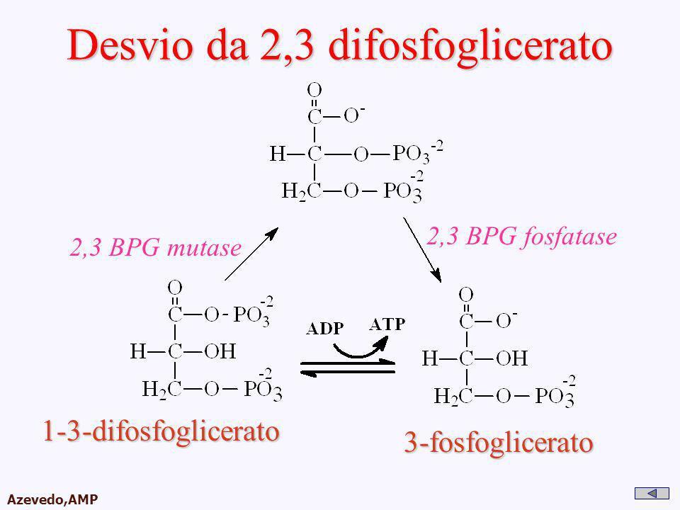AMPA 2003 Azevedo,AMP Desvio da 2,3 difosfoglicerato 1-3-difosfoglicerato 3-fosfoglicerato 2,3 BPG mutase 2,3 BPG fosfatase