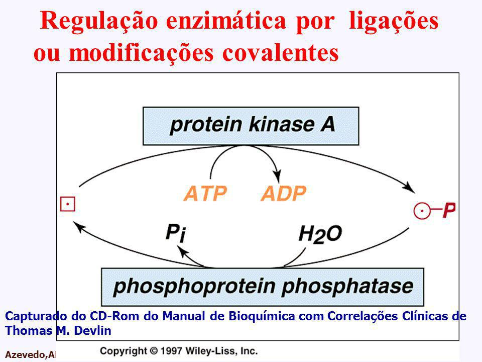 AMPA 2003 Azevedo,AMP Regulação enzimática por ligações ou modificações covalentes Capturado do CD-Rom do Manual de Bioquímica com Correlações Clínica