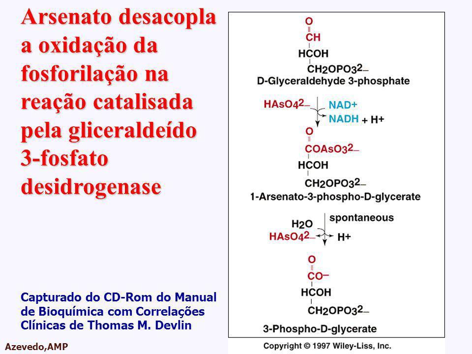 AMPA 2003 Azevedo,AMP Arsenato desacopla a oxidação da fosforilação na reação catalisada pela gliceraldeído 3-fosfato desidrogenase Capturado do CD-Ro