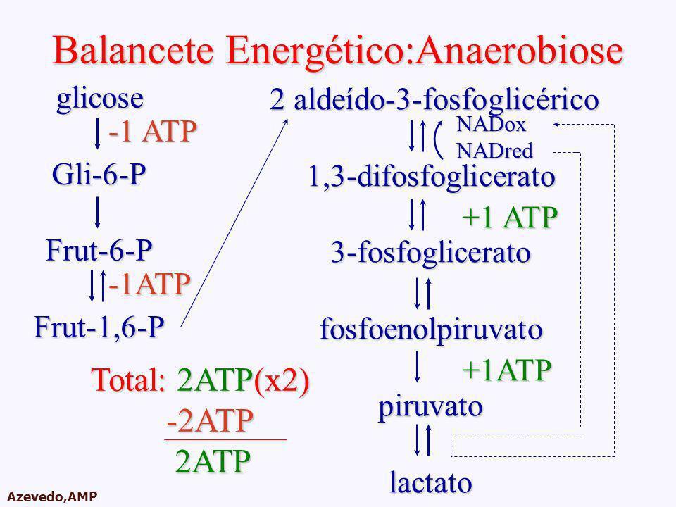 AMPA 2003 Azevedo,AMP Balancete Energético:Anaerobiose 2 aldeído-3-fosfoglicérico 2 aldeído-3-fosfoglicérico1,3-difosfoglicerato3-fosfogliceratofosfoe