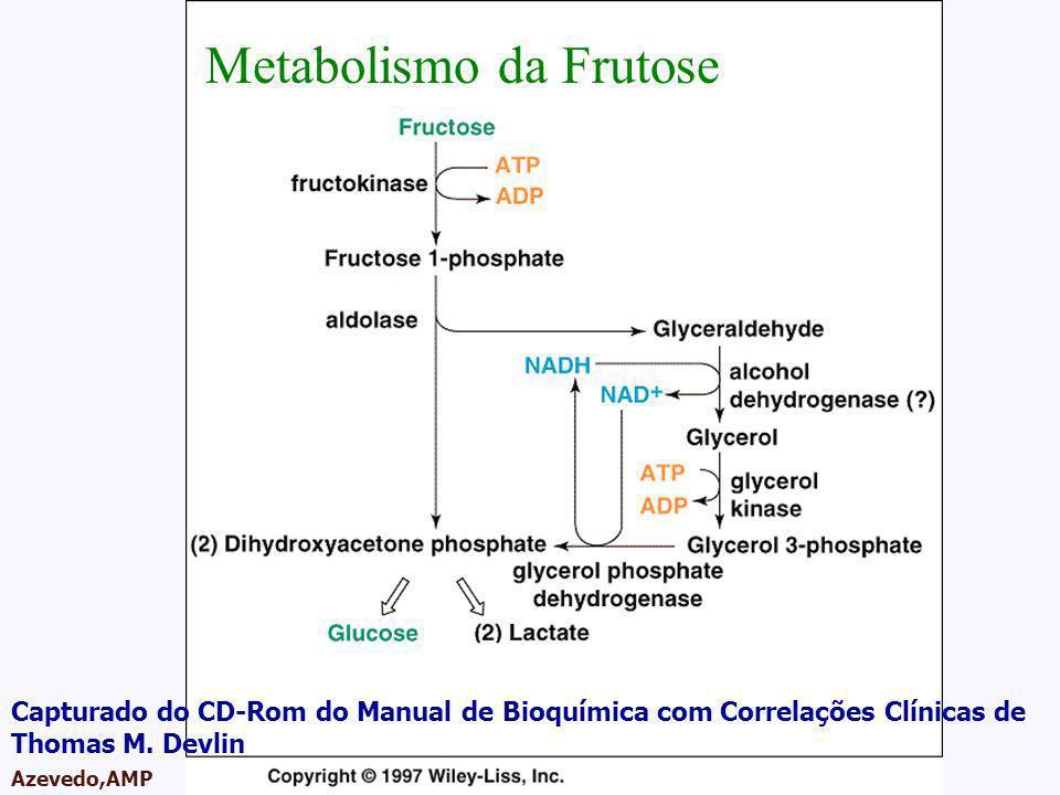 AMPA 2003 Azevedo,AMP Metabolismo da Frutose Capturado do CD-Rom do Manual de Bioquímica com Correlações Clínicas de Thomas M. Devlin