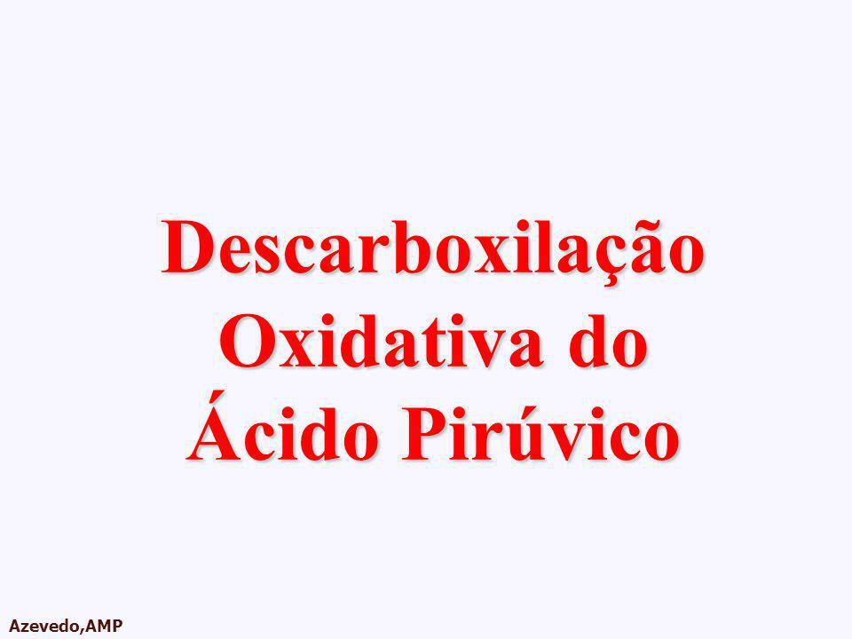 AMPA 2003 Azevedo,AMP Descarboxilação Oxidativa do Ácido Pirúvico