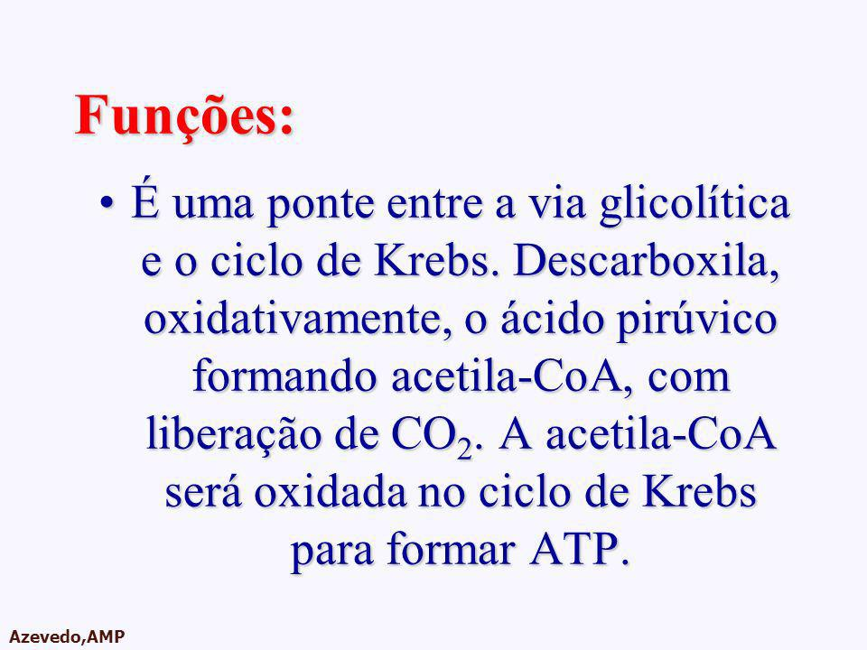 AMPA 2003 Azevedo,AMP Funções: É uma ponte entre a via glicolítica e o ciclo de Krebs. Descarboxila, oxidativamente, o ácido pirúvico formando acetila
