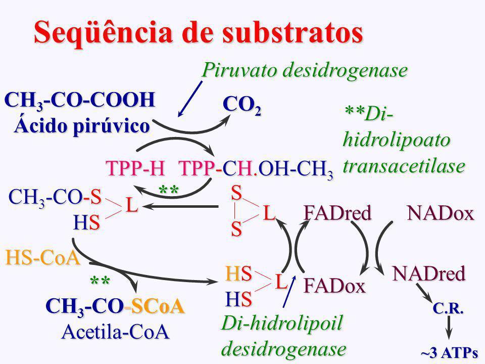 AMPA 2003 Azevedo,AMP Seqüência de substratos CH 3 -CO-COOH Ácido pirúvico TPP-H Piruvato desidrogenase CO 2 TPP-CH.OH-CH 3 L SS ** **Di- hidrolipoato