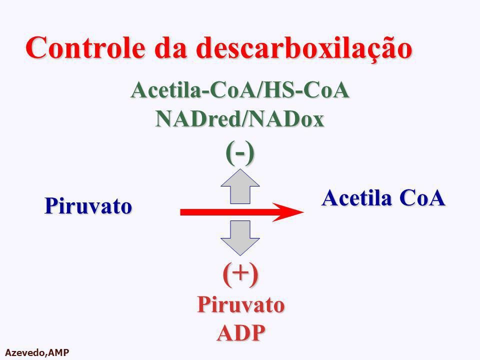 AMPA 2003 Azevedo,AMP Controle da descarboxilação Piruvato Acetila CoA (+)PiruvatoADP Acetila-CoA/HS-CoANADred/NADox(-)