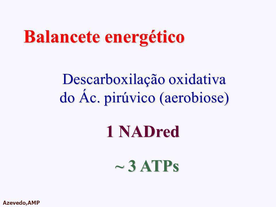 AMPA 2003 Azevedo,AMP Balancete energético Descarboxilação oxidativa do Ác. pirúvico (aerobiose) 1 NADred ~ 3 ATPs