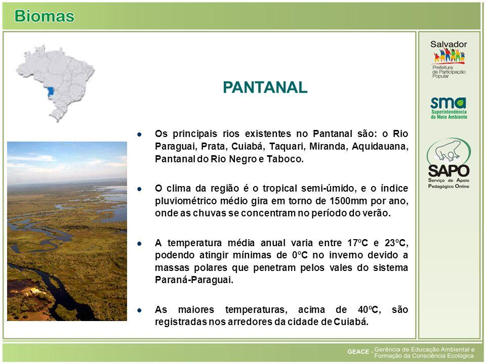 Os principais rios existentes no Pantanal são: o Rio Paraguai, Prata, Cuiabá, Taquari, Miranda, Aquidauana, Pantanal do Rio Negro e Taboco. O clima da