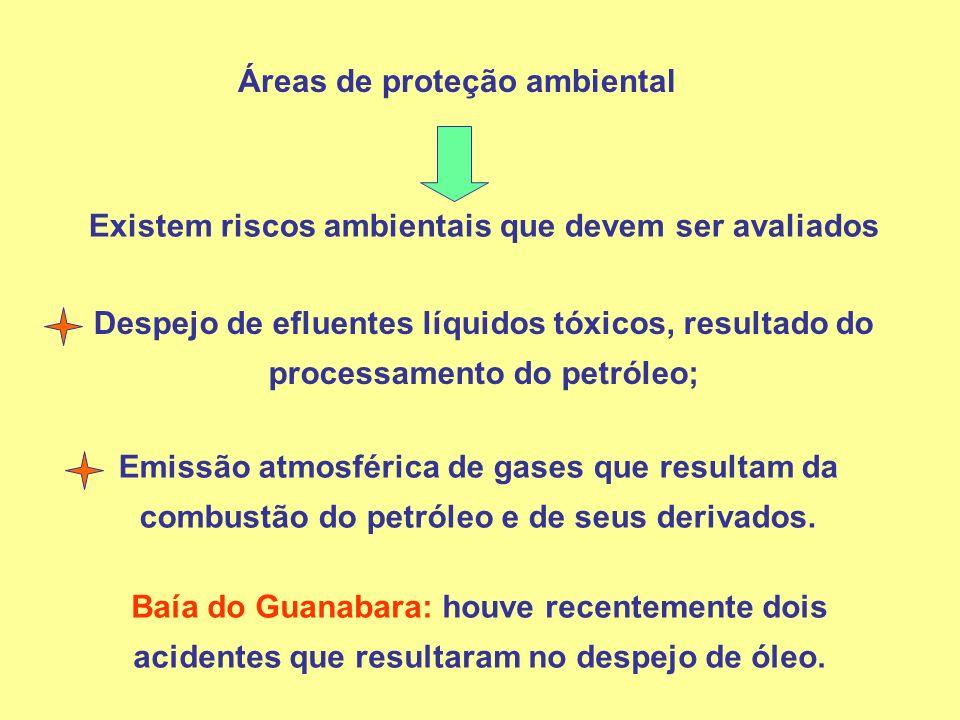 Áreas de proteção ambiental Existem riscos ambientais que devem ser avaliados Despejo de efluentes líquidos tóxicos, resultado do processamento do pet