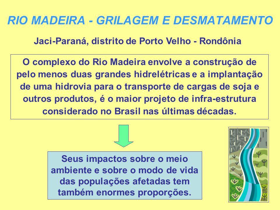 RIO MADEIRA - GRILAGEM E DESMATAMENTO Jaci-Paraná, distrito de Porto Velho - Rondônia O complexo do Rio Madeira envolve a construção de pelo menos dua