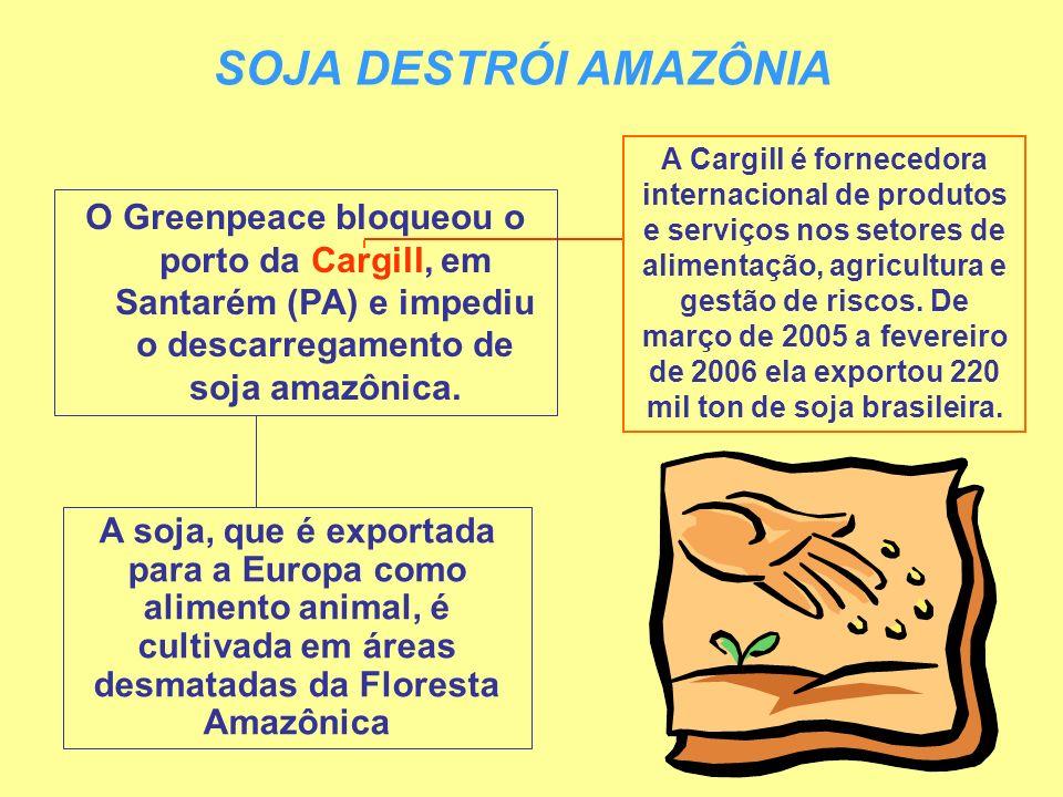 SOJA DESTRÓI AMAZÔNIA O Greenpeace bloqueou o porto da Cargill, em Santarém (PA) e impediu o descarregamento de soja amazônica. A soja, que é exportad