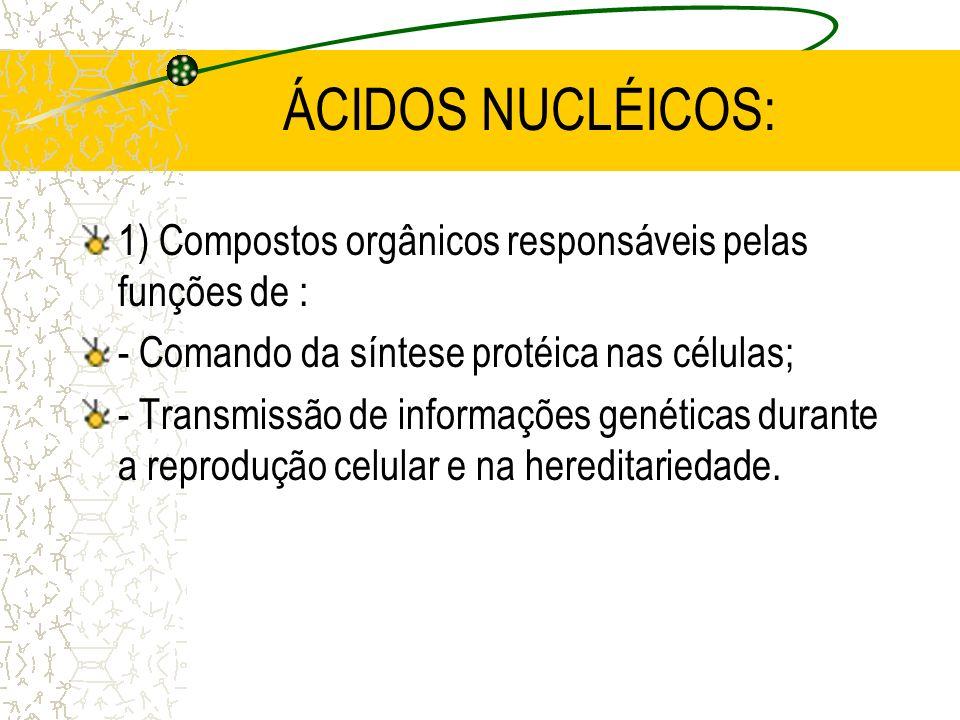ÁCIDOS NUCLÉICOS: 1) Compostos orgânicos responsáveis pelas funções de : - Comando da síntese protéica nas células; - Transmissão de informações genéticas durante a reprodução celular e na hereditariedade.