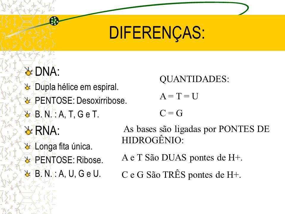 RNA: O RNA ou ARN é o Ácido Ribonucléico e é formado por uma LONGA FITA ÚNICA. Sua composição química é constituída por: FÓSFORO, uma pentose que é a