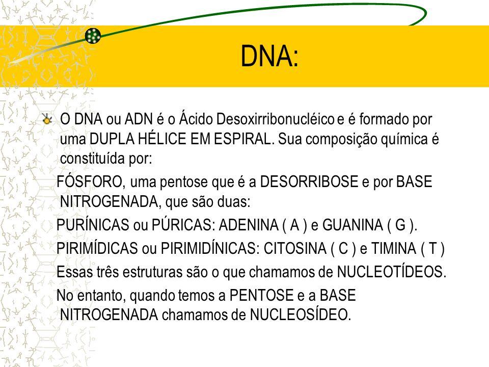 DNA: O DNA ou ADN é o Ácido Desoxirribonucléico e é formado por uma DUPLA HÉLICE EM ESPIRAL.