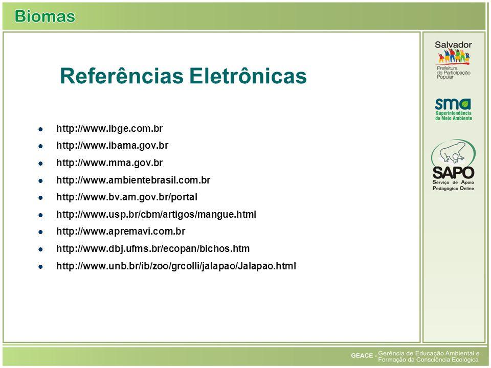 Referências Eletrônicas http://www.ibge.com.br http://www.ibama.gov.br http://www.mma.gov.br http://www.ambientebrasil.com.br http://www.bv.am.gov.br/portal http://www.usp.br/cbm/artigos/mangue.html http://www.apremavi.com.br http://www.dbj.ufms.br/ecopan/bichos.htm http://www.unb.br/ib/zoo/grcolli/jalapao/Jalapao.html