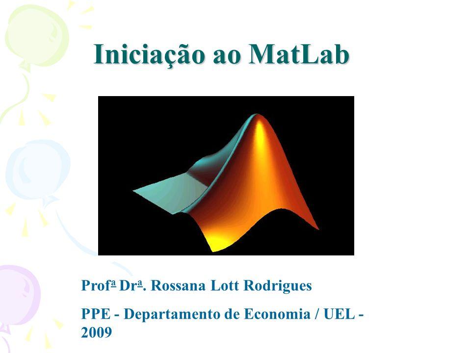 Iniciação ao MatLab Prof a Dr a. Rossana Lott Rodrigues PPE - Departamento de Economia / UEL - 2009