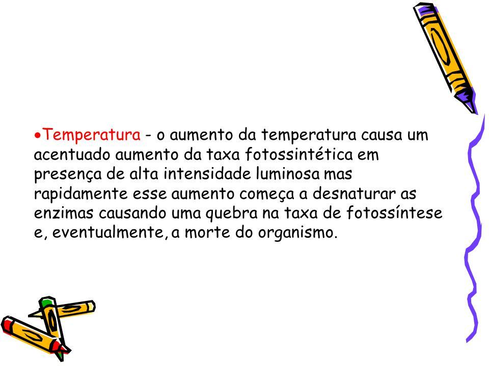 Temperatura - o aumento da temperatura causa um acentuado aumento da taxa fotossintética em presença de alta intensidade luminosa mas rapidamente esse