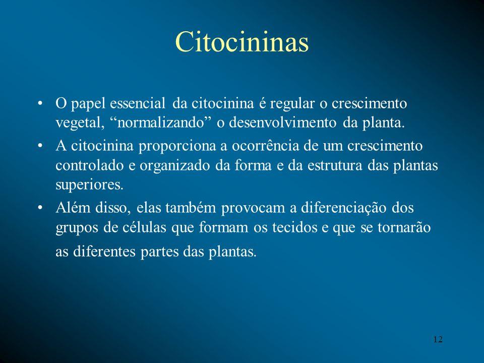 Citocininas O papel essencial da citocinina é regular o crescimento vegetal, normalizando o desenvolvimento da planta. A citocinina proporciona a ocor
