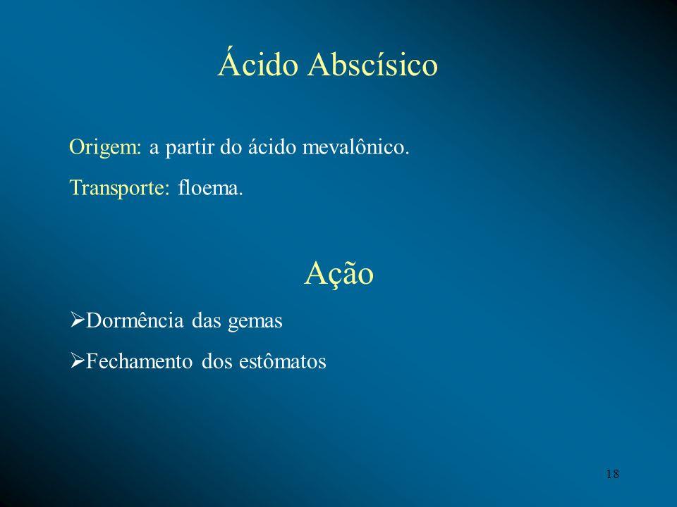 Ácido Abscísico Origem: a partir do ácido mevalônico. Transporte: floema. Ação Dormência das gemas Fechamento dos estômatos 18