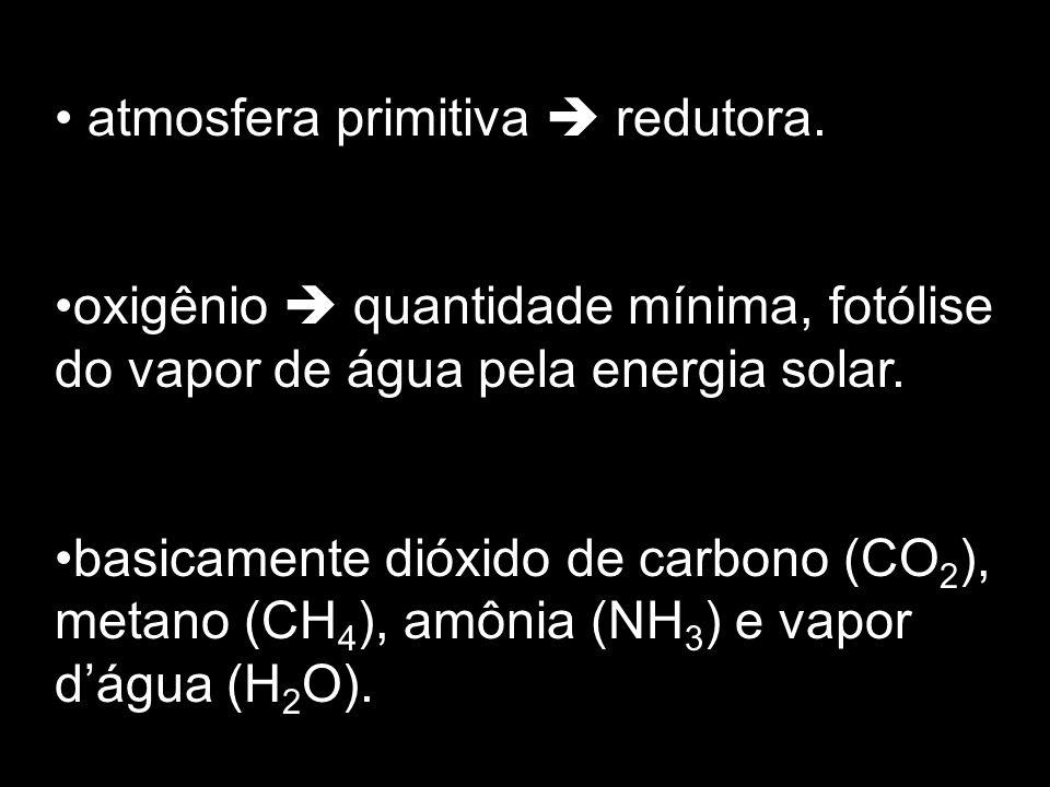atmosfera primitiva redutora. oxigênio quantidade mínima, fotólise do vapor de água pela energia solar. basicamente dióxido de carbono (CO 2 ), metano