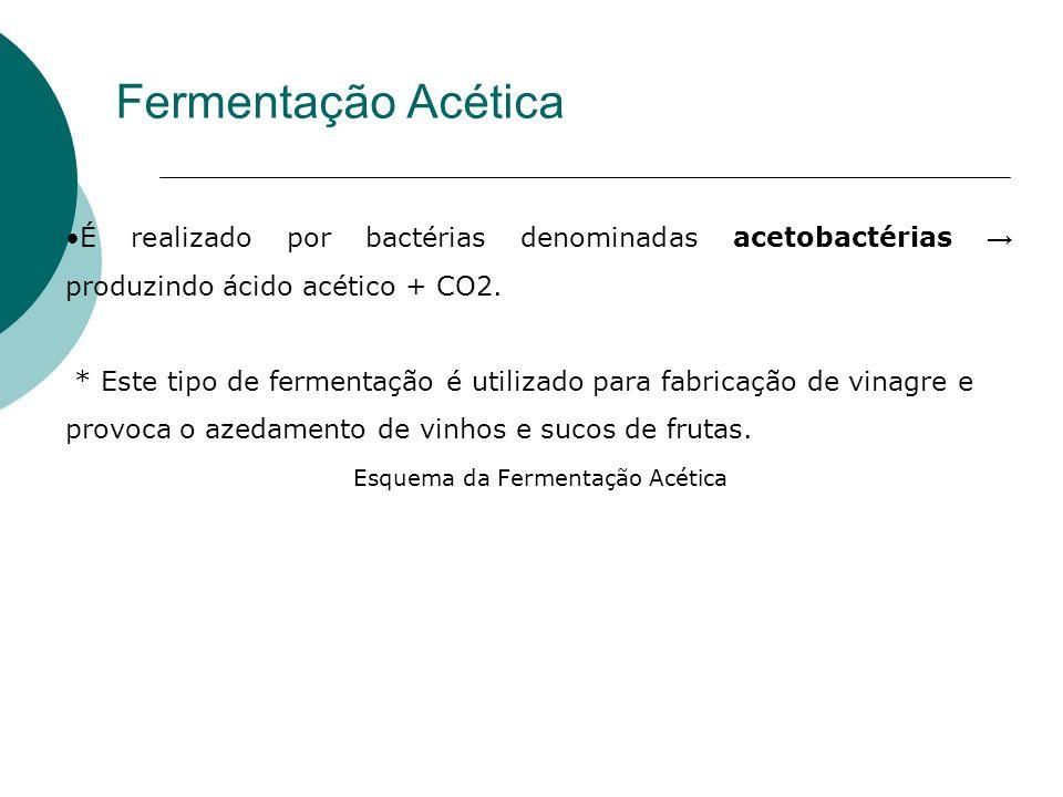 Fermentação Acética É realizado por bactérias denominadas acetobactérias produzindo ácido acético + CO2. * Este tipo de fermentação é utilizado para f