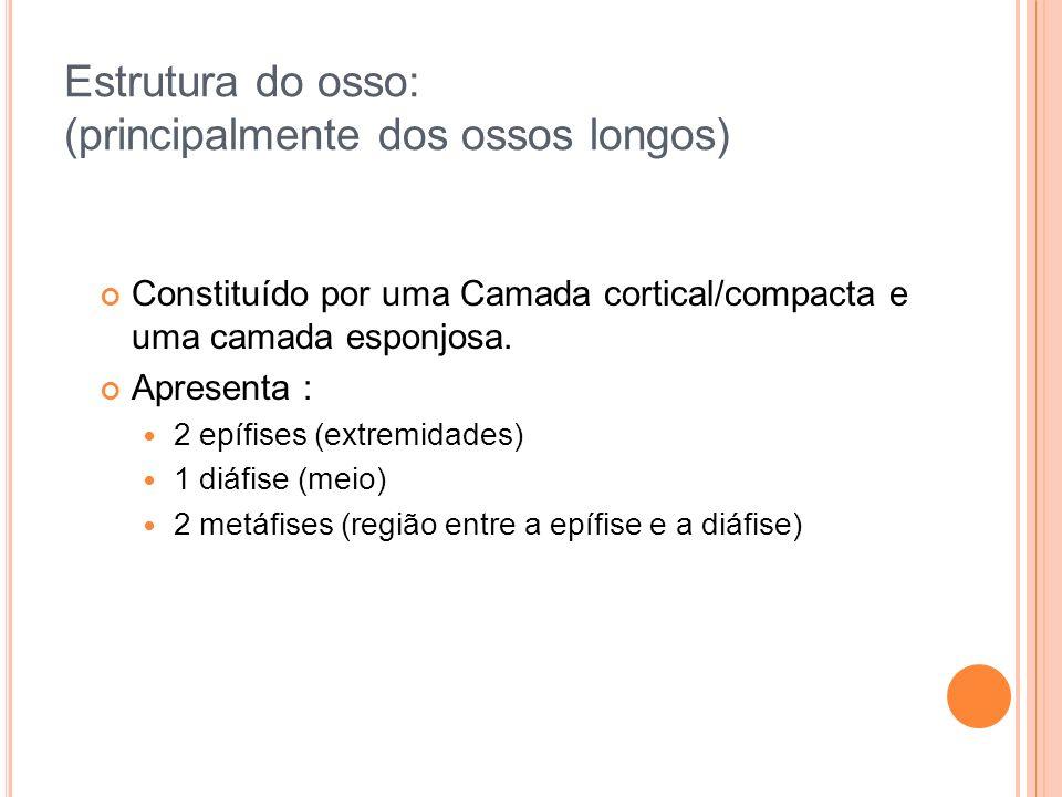 SENÃO...
