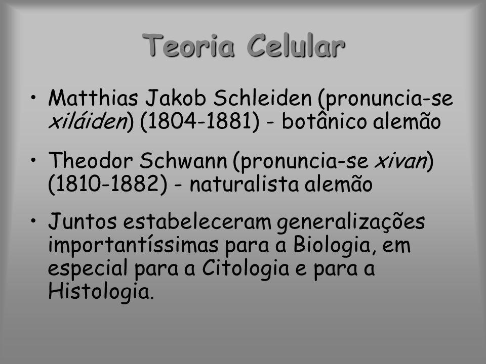 Teoria Celular A idéia de que as células podiam surgir espontaneamente perdeu credibilidade com as observações da divisão celular.
